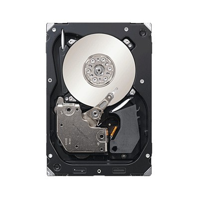 Seagate ST3300557SS