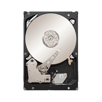 Seagate ST33000651AS