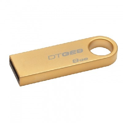Kingston 8GB DTGE9-8GB