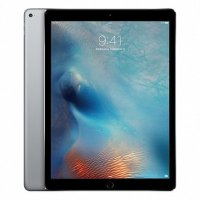 Apple iPad Pro 12.9 256Gb Wi-Fi ML0T2RU-A