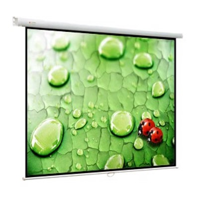 Viewscreen Lotus WLO-4301