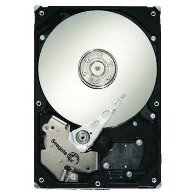 Seagate ST3250823AS