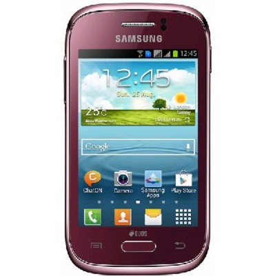 Samsung Galaxy Young DUOS GT-S6312WRASER