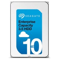 Seagate Enterprise Capacity 10Tb ST10000NM0016