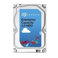 Seagate Enterprise Capacity 1Tb ST1000NM0045