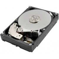 Toshiba Enterprise Capacity 10Tb MG06ACA10TE